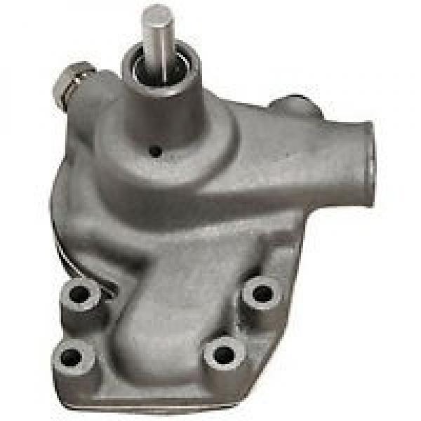 Gleaner R75 Reman Hydraulic Final Drive Motor #3 image