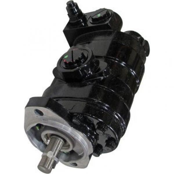 Gleaner 71412497 Reman Hydraulic Final Drive Motor #1 image